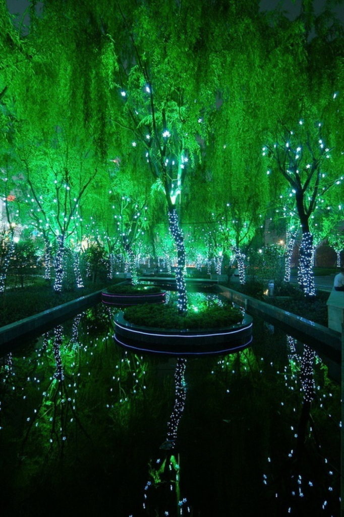 magic_forest_in_shanghai
